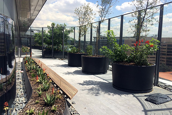 Tswellapele Plants & Microzone Trading <br/>for<br/> Sasol Head Office - Steel Planters