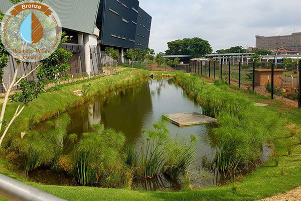 Servest Landscaping & Turf, a division of Servest Pty Ltd <br/>for<br/> Dipalopalo FM Solutions at Department of Statistics SA