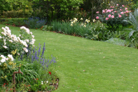 Beat the heat with lawn says SALI turf expert